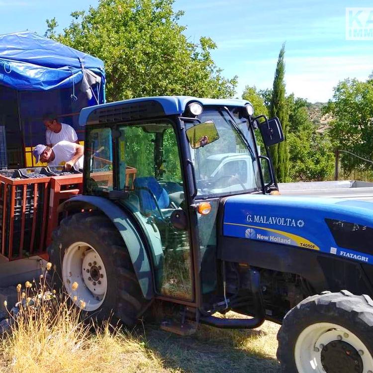 Square neubauimmobilien italien kalabrien traktor