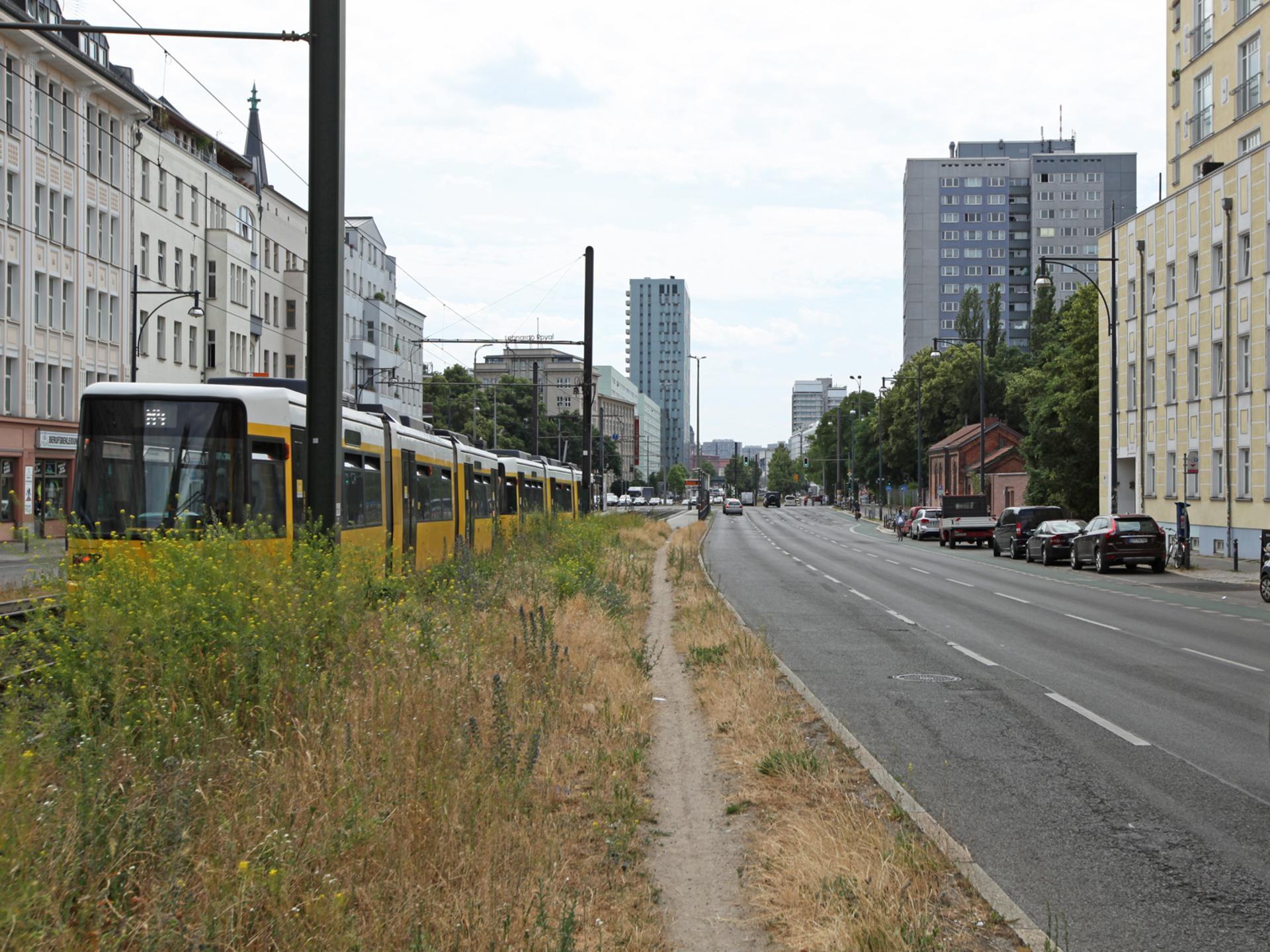 Blickrichtung Mitte | Greifswalder Straße